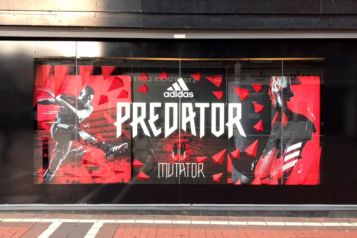 Adidas Predator window